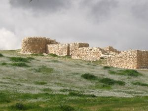 Tel Arad city wall